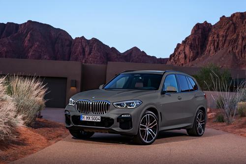 Фото автомобиля BMW X5 G05, ракурс: 45 цвет: серый
