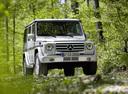 Фото авто Mercedes-Benz G-Класс W463 [рестайлинг], ракурс: 315 цвет: серебряный