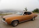 Фото авто Chevrolet Chevelle 2 поколение [4-й рестайлинг], ракурс: 90