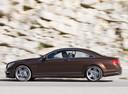 Фото авто Mercedes-Benz CL-Класс C216 [рестайлинг], ракурс: 90 цвет: коричневый