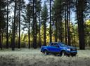 Фото авто Ford F-Series 12 поколение, ракурс: 315