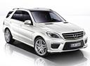 Фото авто Mercedes-Benz M-Класс W166, ракурс: 315 цвет: серебряный