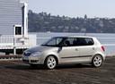 Фото авто Skoda Fabia 5J, ракурс: 45 цвет: серебряный