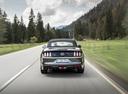 Фото авто Ford Mustang 6 поколение, ракурс: 180 цвет: серый