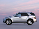 Фото авто Mercedes-Benz M-Класс W164, ракурс: 90 цвет: серебряный