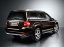 Фото авто Mercedes-Benz GL-Класс X164 [рестайлинг], ракурс: 225 цвет: коричневый