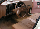 Фото авто Chevrolet Citation 1 поколение, ракурс: торпедо