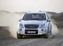 Фото авто Mercedes-Benz M-Класс W164 [рестайлинг],  цвет: серебряный