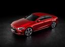 Фото авто Mercedes-Benz CLS-Класс C257, ракурс: сверху цвет: красный