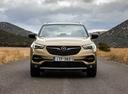 Фото авто Opel Grandland X 1 поколение,  цвет: золотой