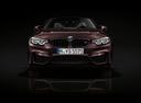 Фото авто BMW M4 F82/F83 [рестайлинг],  цвет: коричневый