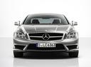 Фото авто Mercedes-Benz CLS-Класс C218/X218,  цвет: серый