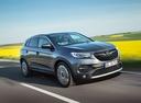 Фото авто Opel Grandland X 1 поколение, ракурс: 315