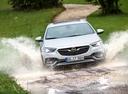 Фото авто Opel Insignia B,  цвет: серебряный