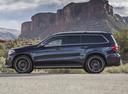 Фото авто Mercedes-Benz GLS-Класс X166, ракурс: 90 цвет: черный