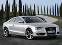 Фото авто Audi A5 8T, ракурс: 315 цвет: серебряный