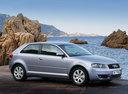 Фото авто Audi A3 8P, ракурс: 315