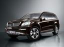 Фото авто Mercedes-Benz GL-Класс X164 [рестайлинг], ракурс: 45 цвет: коричневый