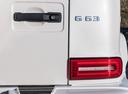 Фото авто Mercedes-Benz G-Класс W464, ракурс: задние фонари цвет: белый