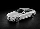 Фото авто Mercedes-Benz CLS-Класс C257, ракурс: 45 цвет: серебряный