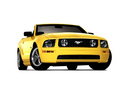 Фото авто Ford Mustang 5 поколение,  цвет: желтый