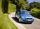 Фото авто Skoda Roomster 1 поколение, ракурс: 315 цвет: голубой