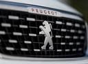 Фото авто Peugeot 308 T9 [рестайлинг], ракурс: шильдик