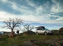 Фотогалерея обновлённого Subaru Outback.