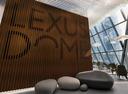 В Москве открылось премиум-пространство Lexus Dome.Новости Am.ru